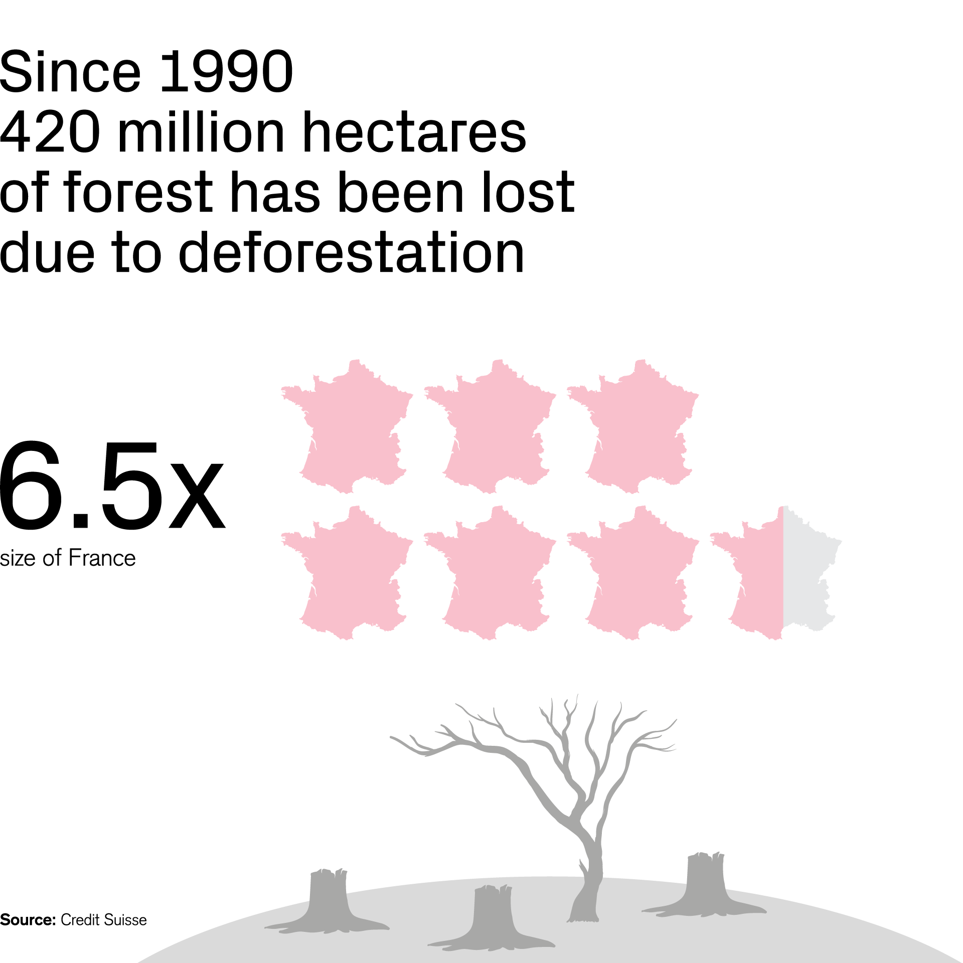 Only since 1990 420 million hectares of forest has been lost due to deforestation