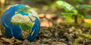 Investing sustainably: Sustainable funds are particularly stable