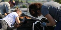 Students in Dietlikon installing solar panels on the roof of their school
