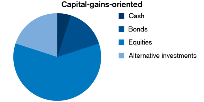 Capital-Gains-Oriented Investment Strategy