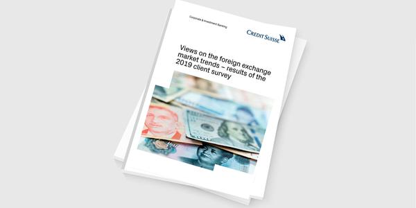 Views on the development of exchange rates in 2019