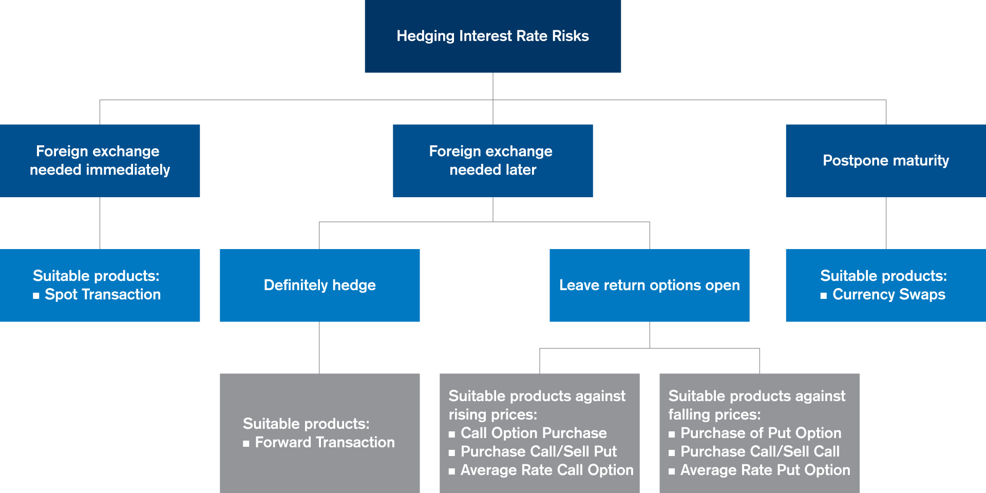 Hedging Interest Rate Risks