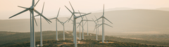 Use sustainable investments like impact investments to combine climate protection and returns