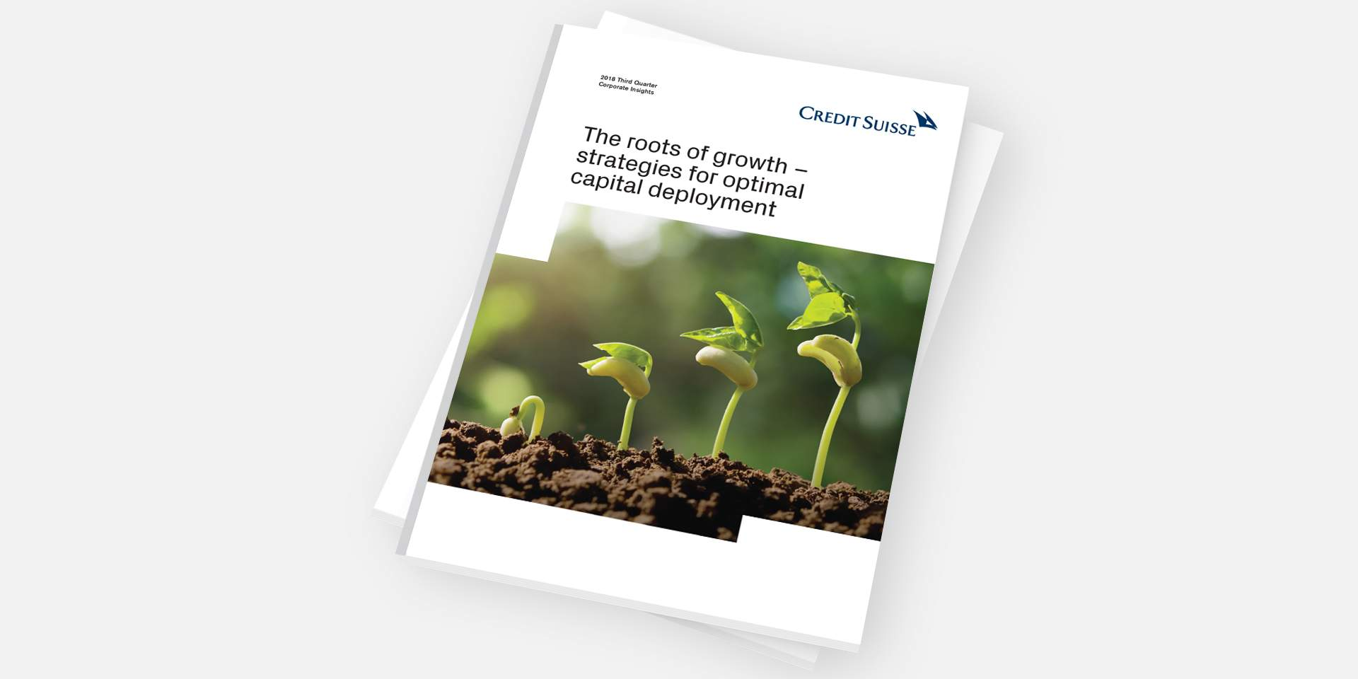The roots of growth – strategies for optimal capital deployment